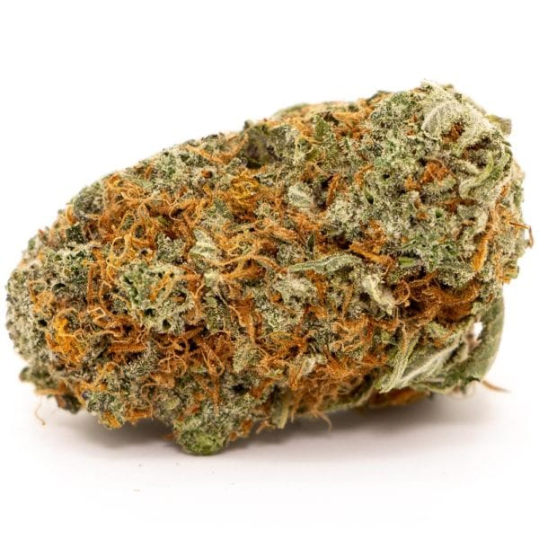 Girl Scout Cookies Strain - GSC
